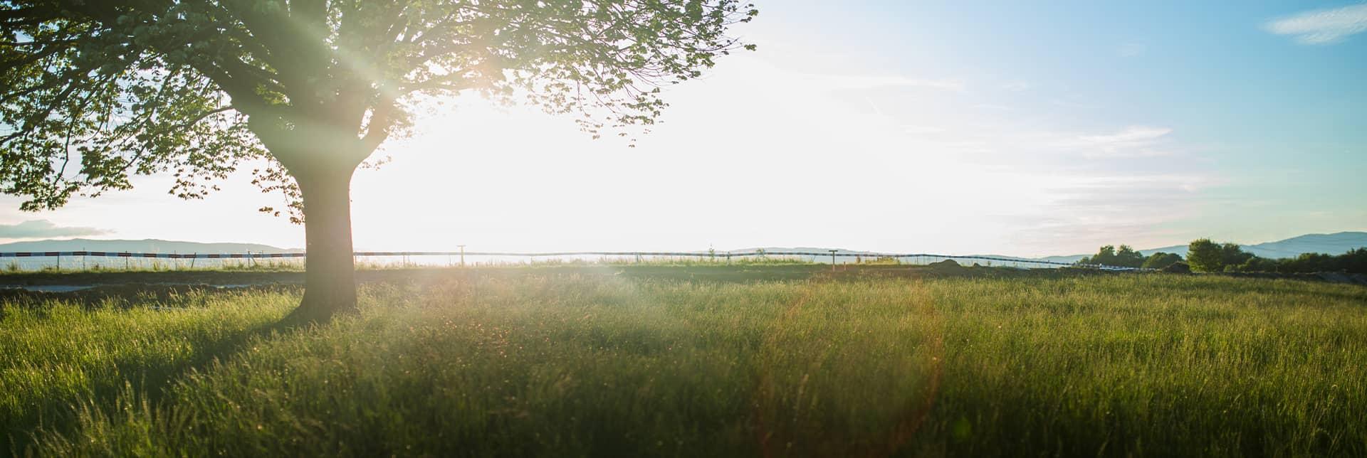 STILORD - Nachhaltigkeitsversprechen